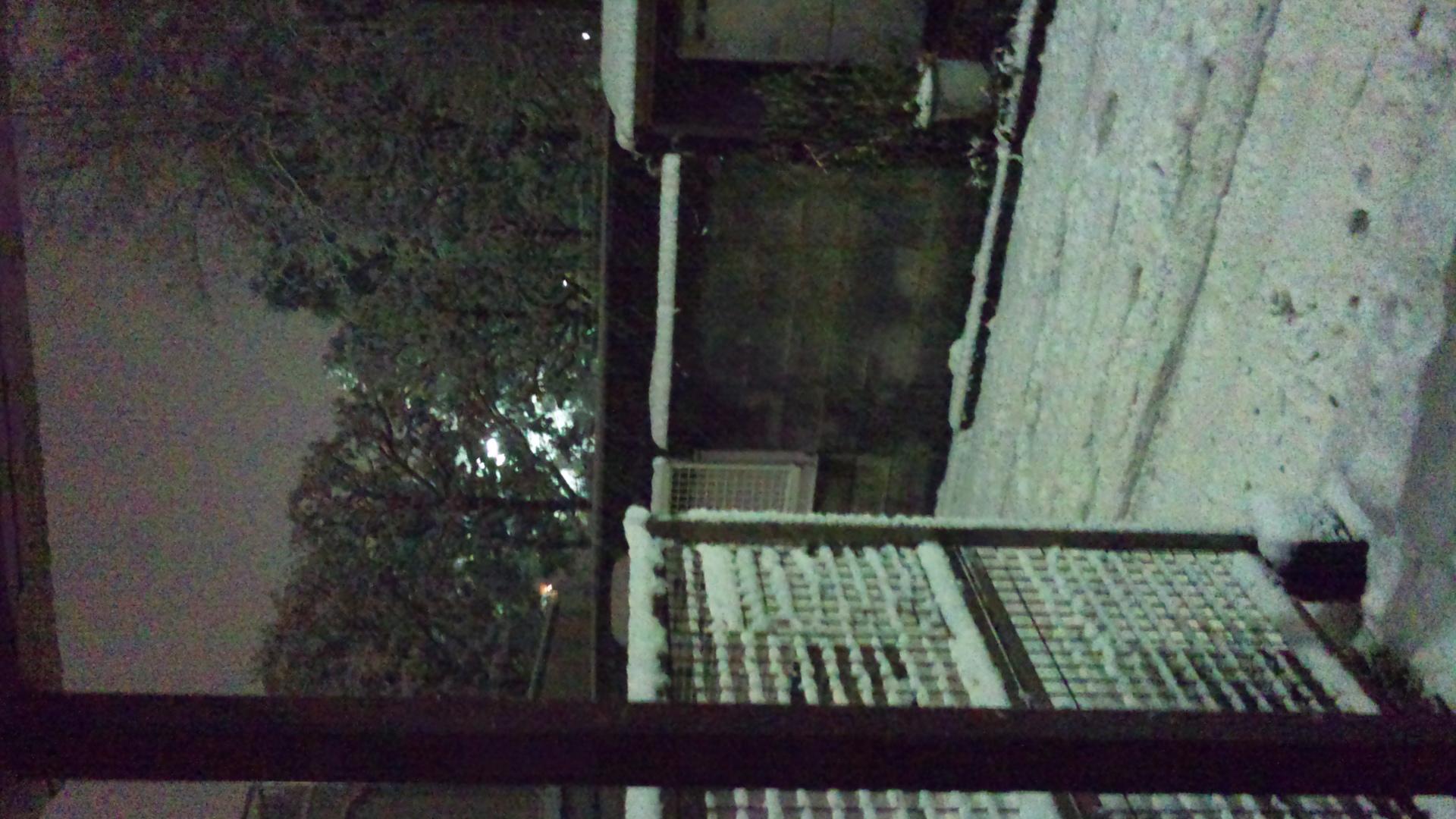 雪だぁぁっ☆