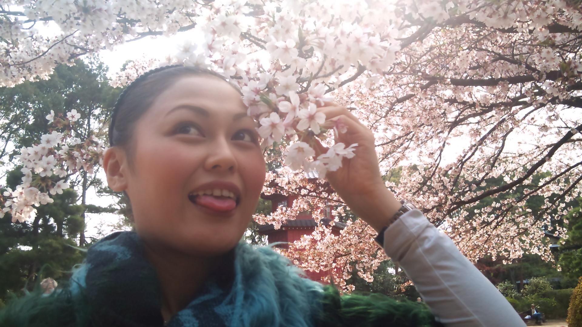 お花見お散歩!